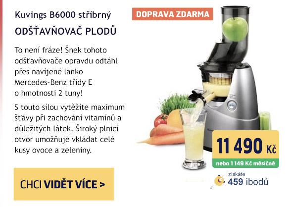 Kuvings Kuvings B6000 stříbrný