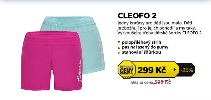 CLEOFO 2