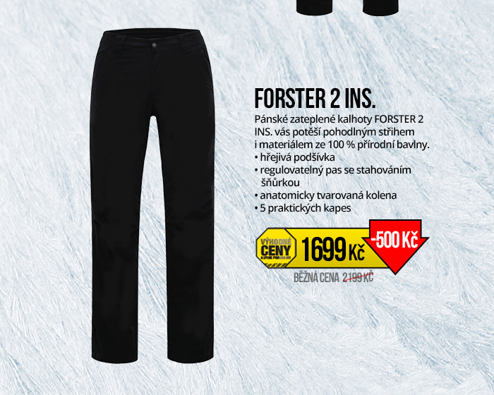 FORSTER 2 INS.
