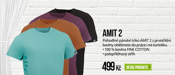 AMIT 2