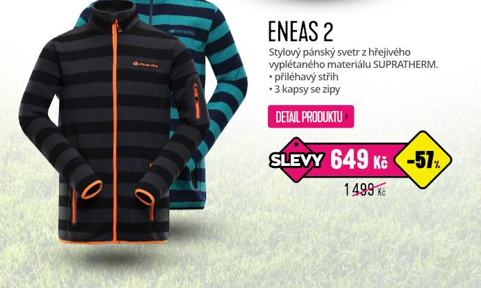 ENEAS 2