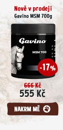 Nově v prodeji Gavino MSM 700g