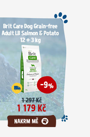 Brit Care Dog Grain-free Adult LB Salmon Potato 12 + 3 kg